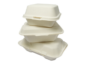 Bagasse Containers